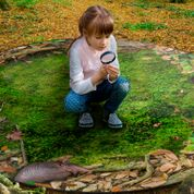 Forest Floor Seating Photo Rug - KidCarpet.com