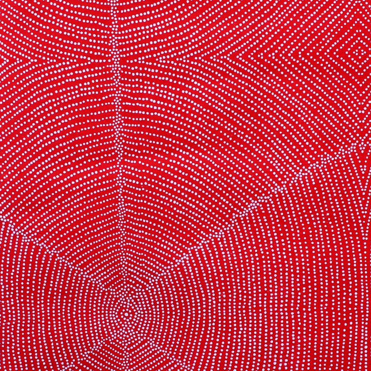 PLUM SEEDS RED by Aboriginal Artist  KATHLEEN PITJARA
