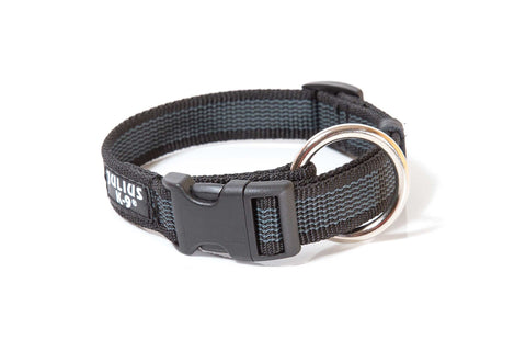 Julius-K9 'Color & Gray' Collar