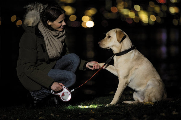 Retractable Dog Lead - MultiBox & LED Accessories