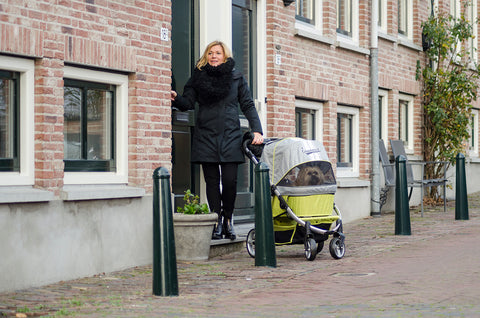 *Innopet Retro Pet Stroller - Free Raincover & Free Shipping