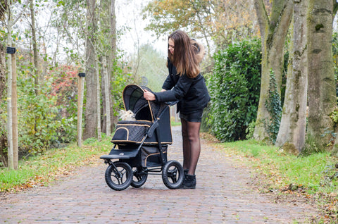 *Innopet Buggy Adventure (30Kg load, All Terrain) - Price Match guarantee