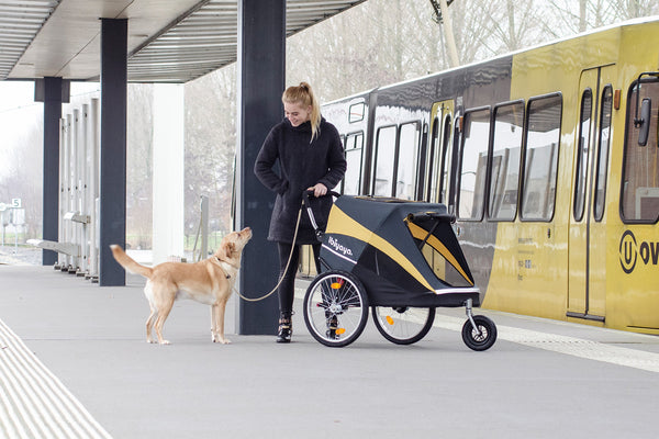 *Limited number now available - Innopet Hercules Stroller for dogs up to 50Kg (with Raincover) - Free Shipping
