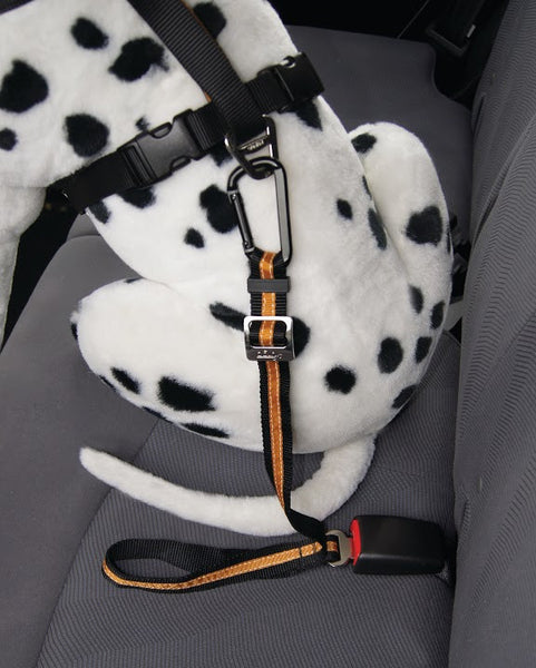 Leads & Harnesses - Direct To Seatbelt Tether