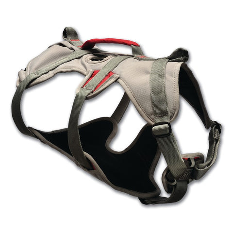 Leads & Harnesses - Doubleback Harness