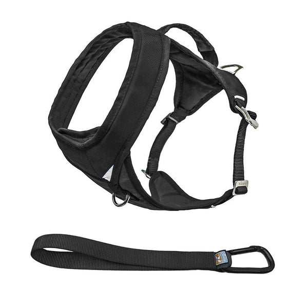 Leads & Harnesses - Go-Tech Adventure Harness - Nesting Buckles - W/seatbelt Tether