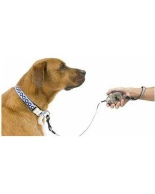 Leads & Harnesses - Zip Lead Retractable Leash