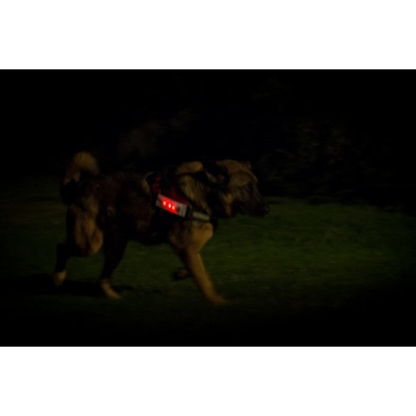 Julius-K9 LED Light & Reflective Patch