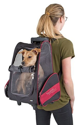 Dog Trolley Vacation - Dog Carrier