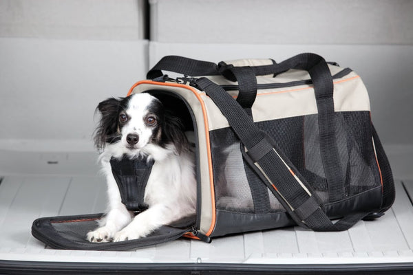 Travel - Wander (Pet) Carrier