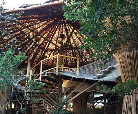 Top 5 Tree House Hotels From Around the World