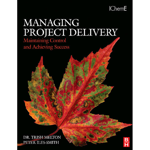 Managing Project Delivery: Maintaining Control and Achieving Success, 1st Edition