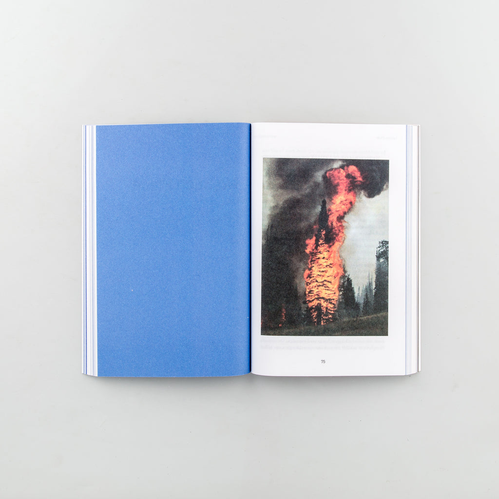 Lacuna Park: Essays and Other Adventures in Photography by Nicholas Muellner - Cover