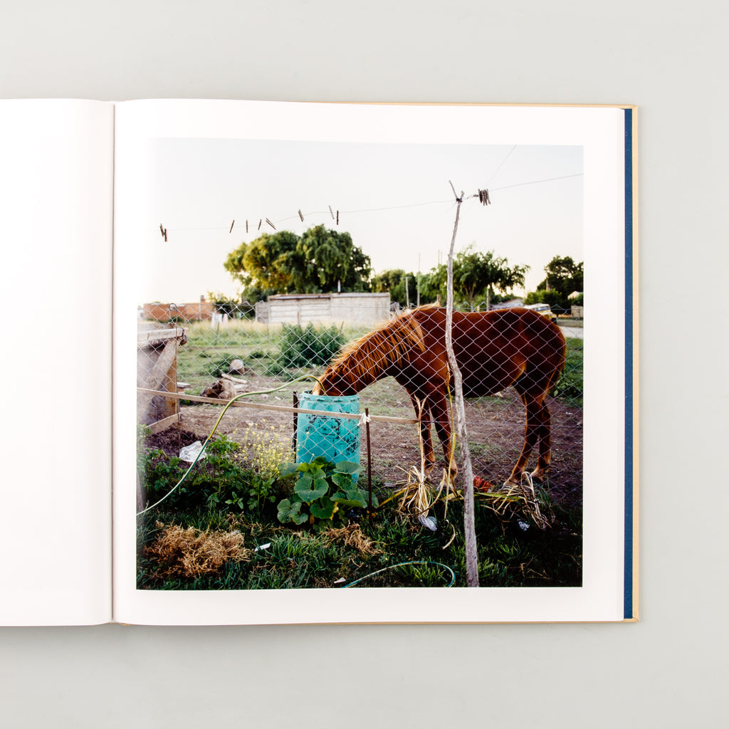 The Adventures of Guille and Belinda and The Illusion of an Everlasting Summer by Alessandra Sanguinetti - 8