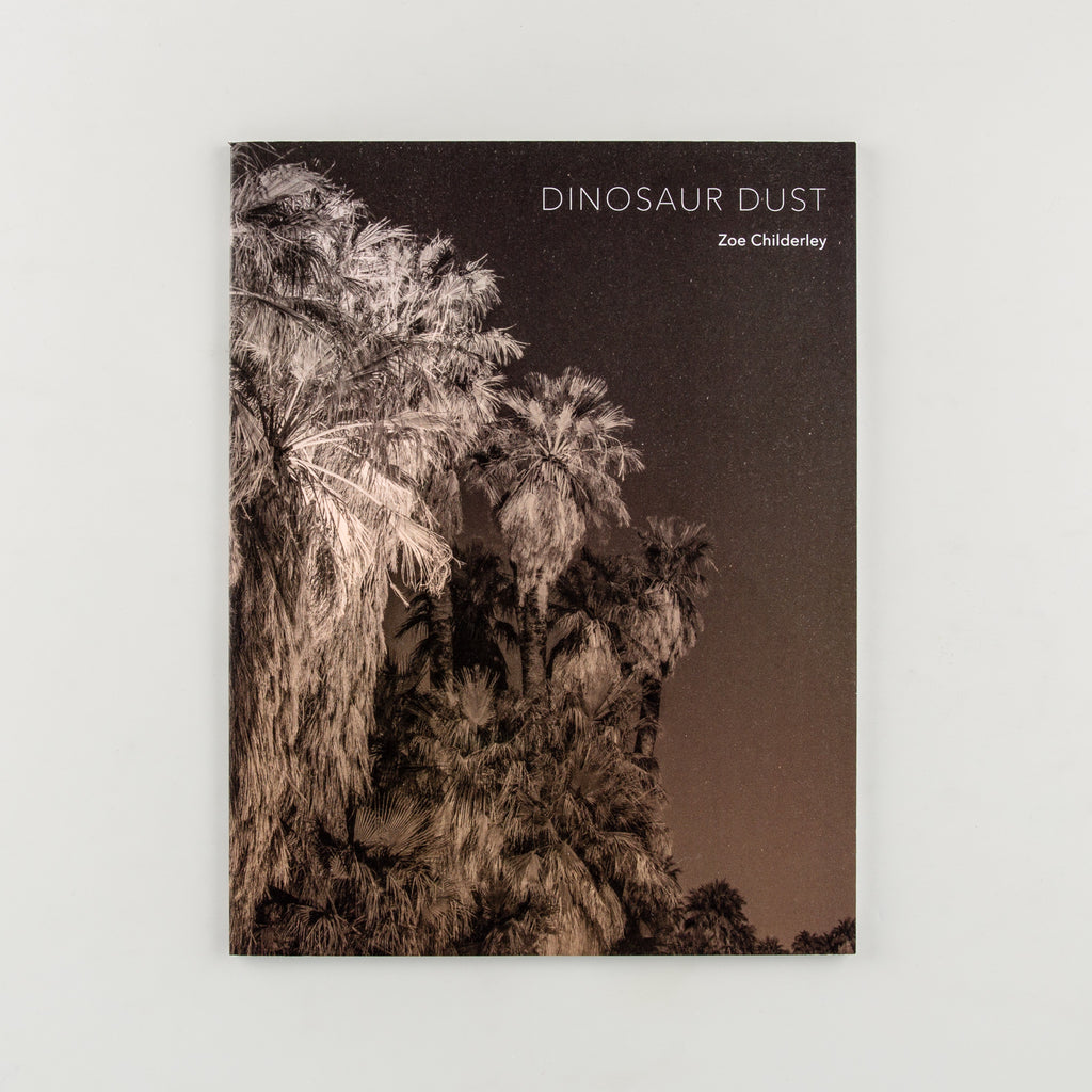 Dinosaur Dust by Zoe Childerley - Cover