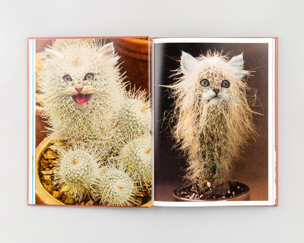 Cats & Plants by Stephen Eichhorn - 4