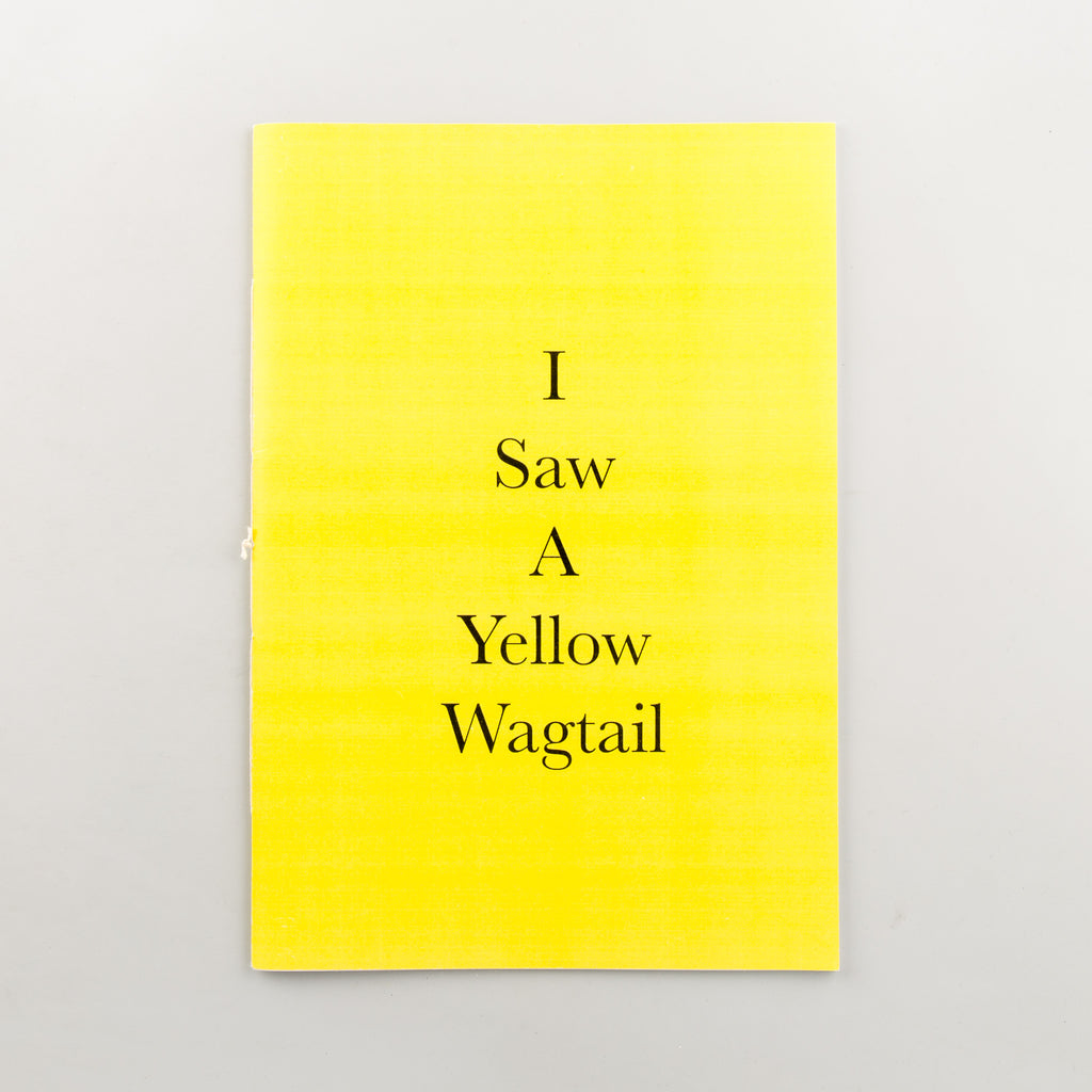I Saw A Yellow Wagtail - 105