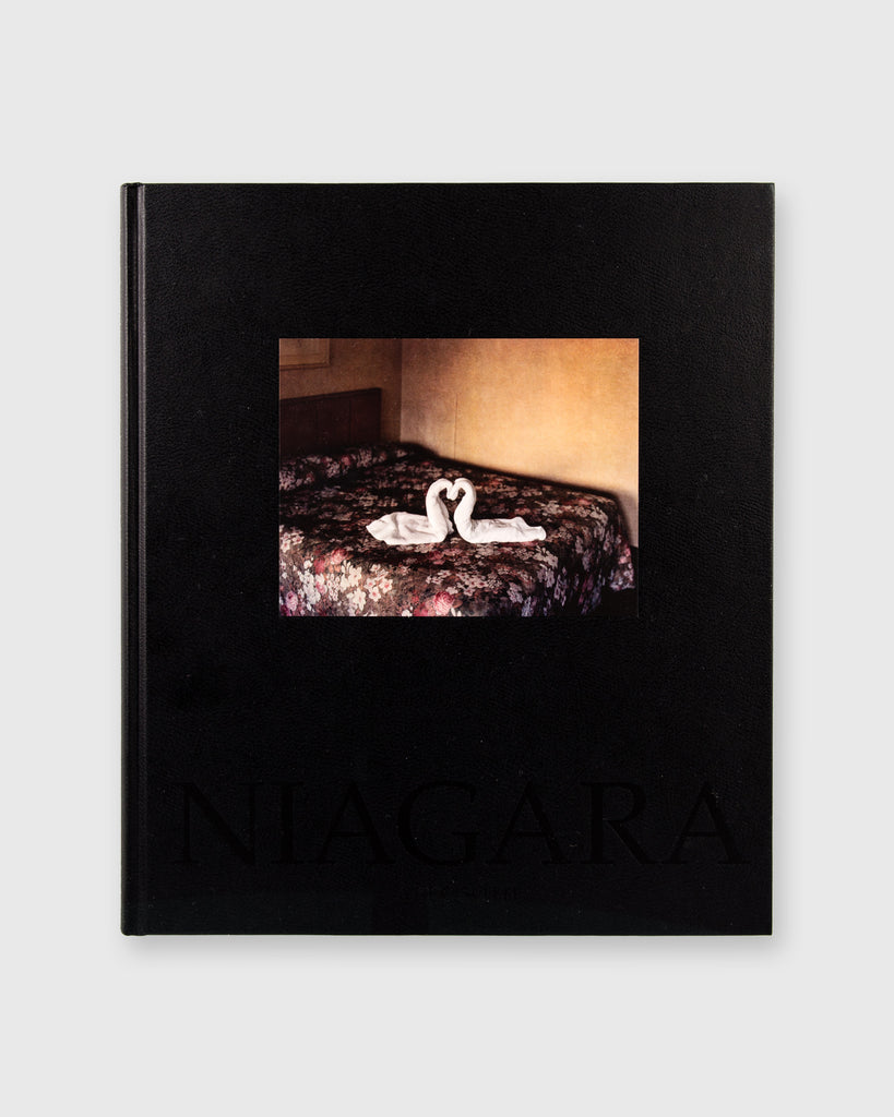 Niagara by Alec Soth - Cover