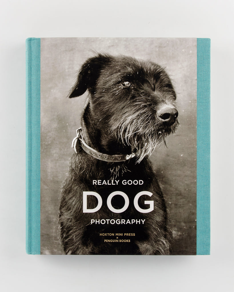 Really Good Dog Photography by Hoxton Mini Press - 720