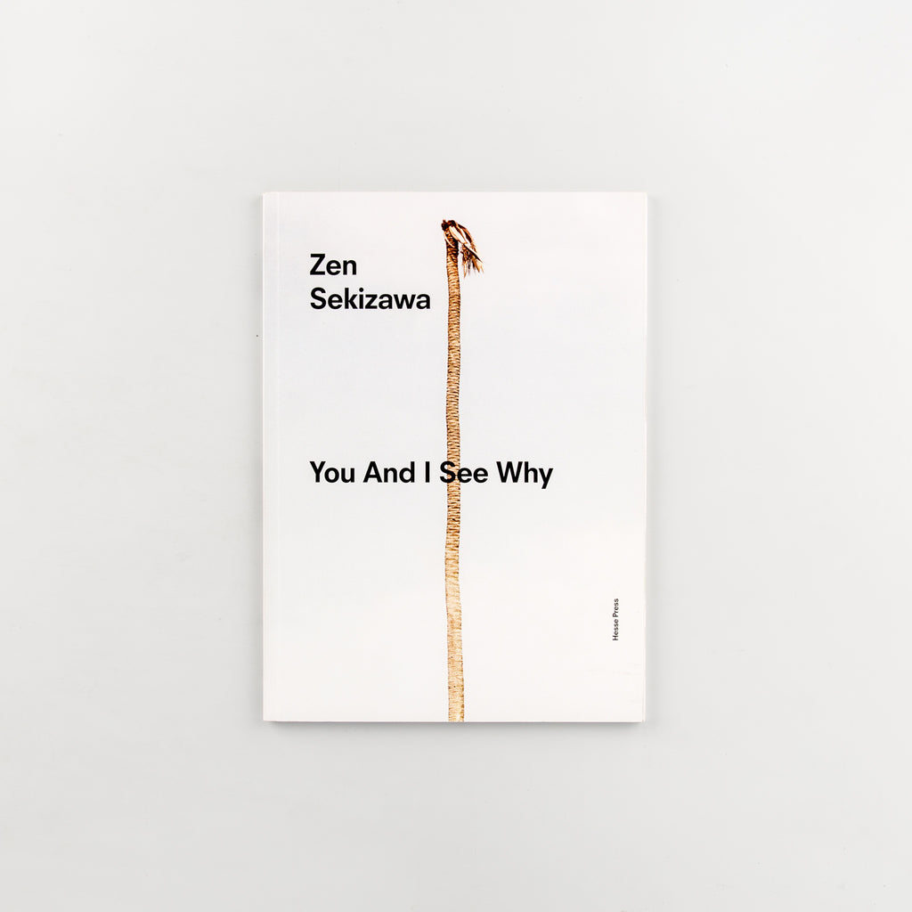You And I See Why by Zen Sekizawa - 855