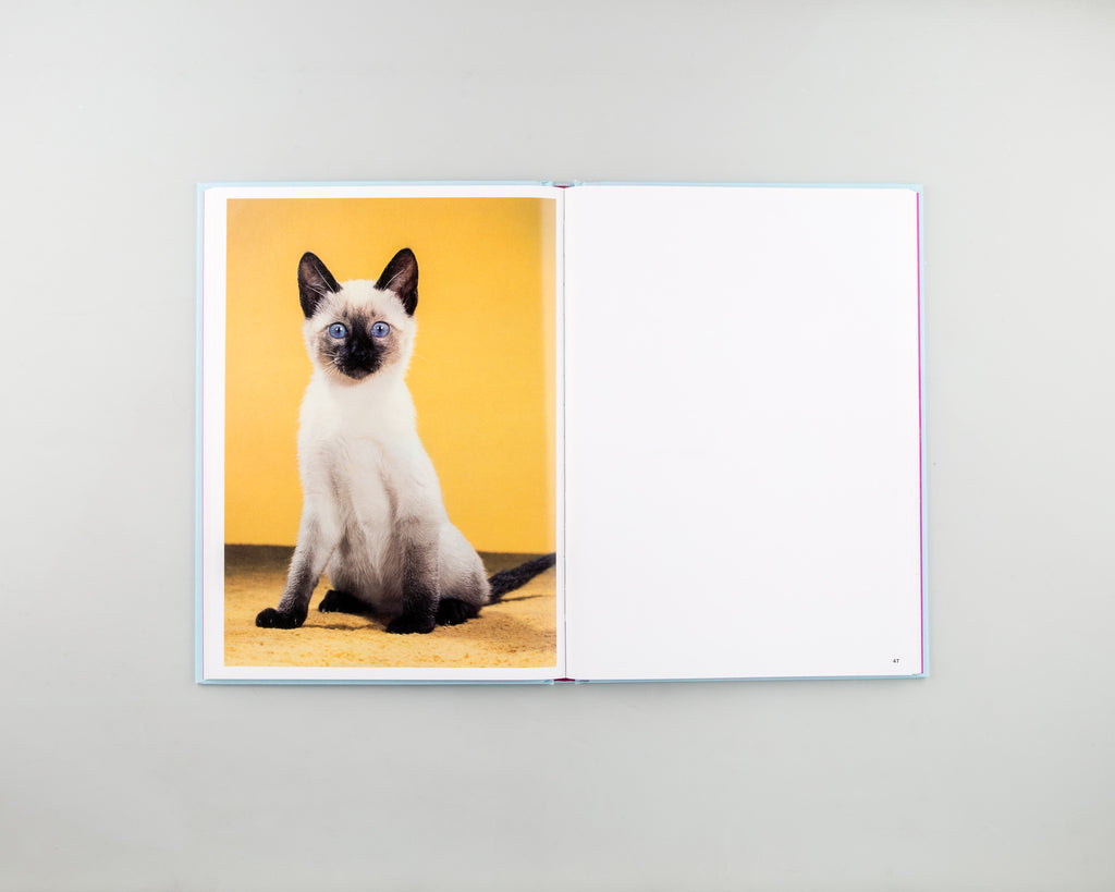Walter Chandoha: The Cat Photographer by Walter Chandoha - Cover