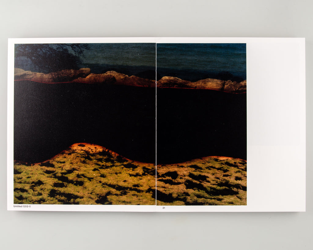 Constructed Landscapes by Dafna Talmor - Cover