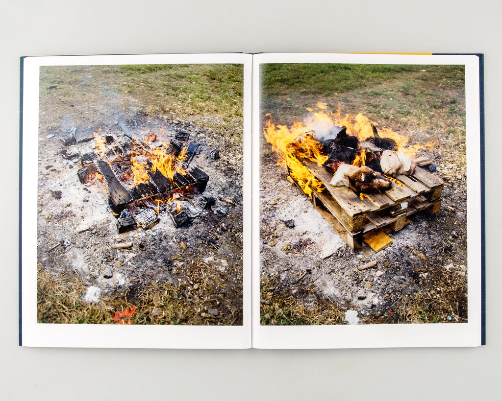 Let the Sun Beheaded Be by Gregory Halpern - 7