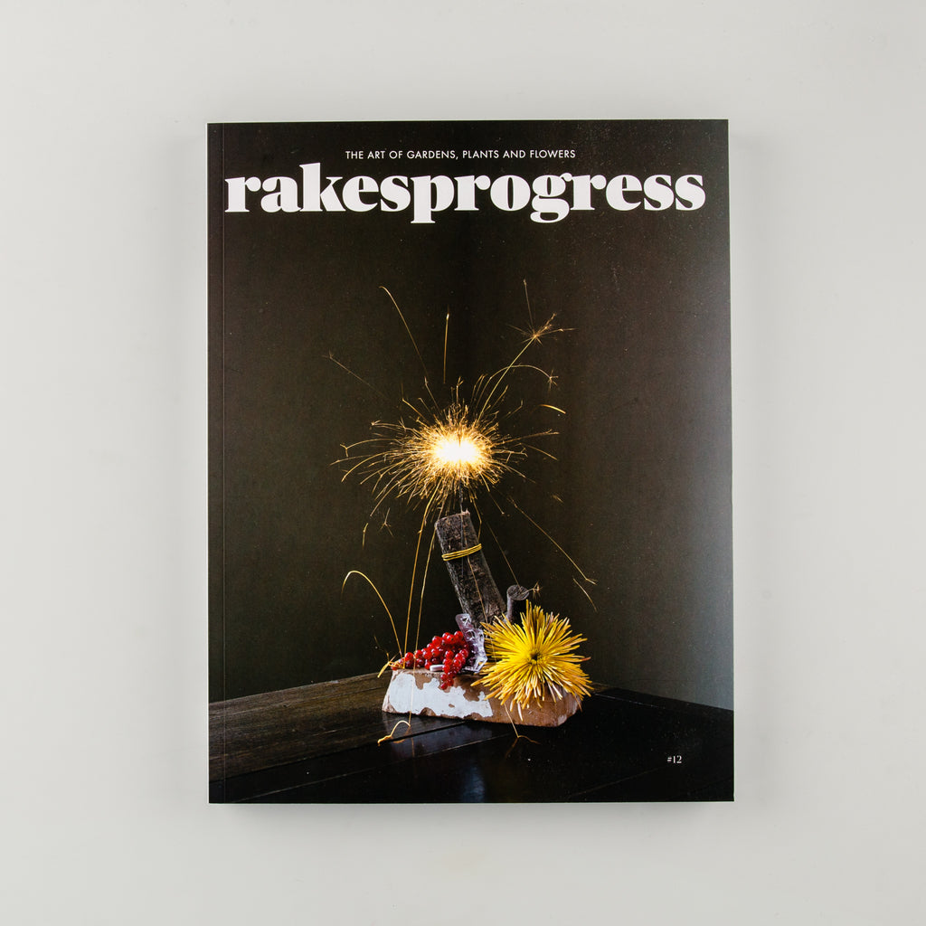 rakesprogress Magazine 12 - 1