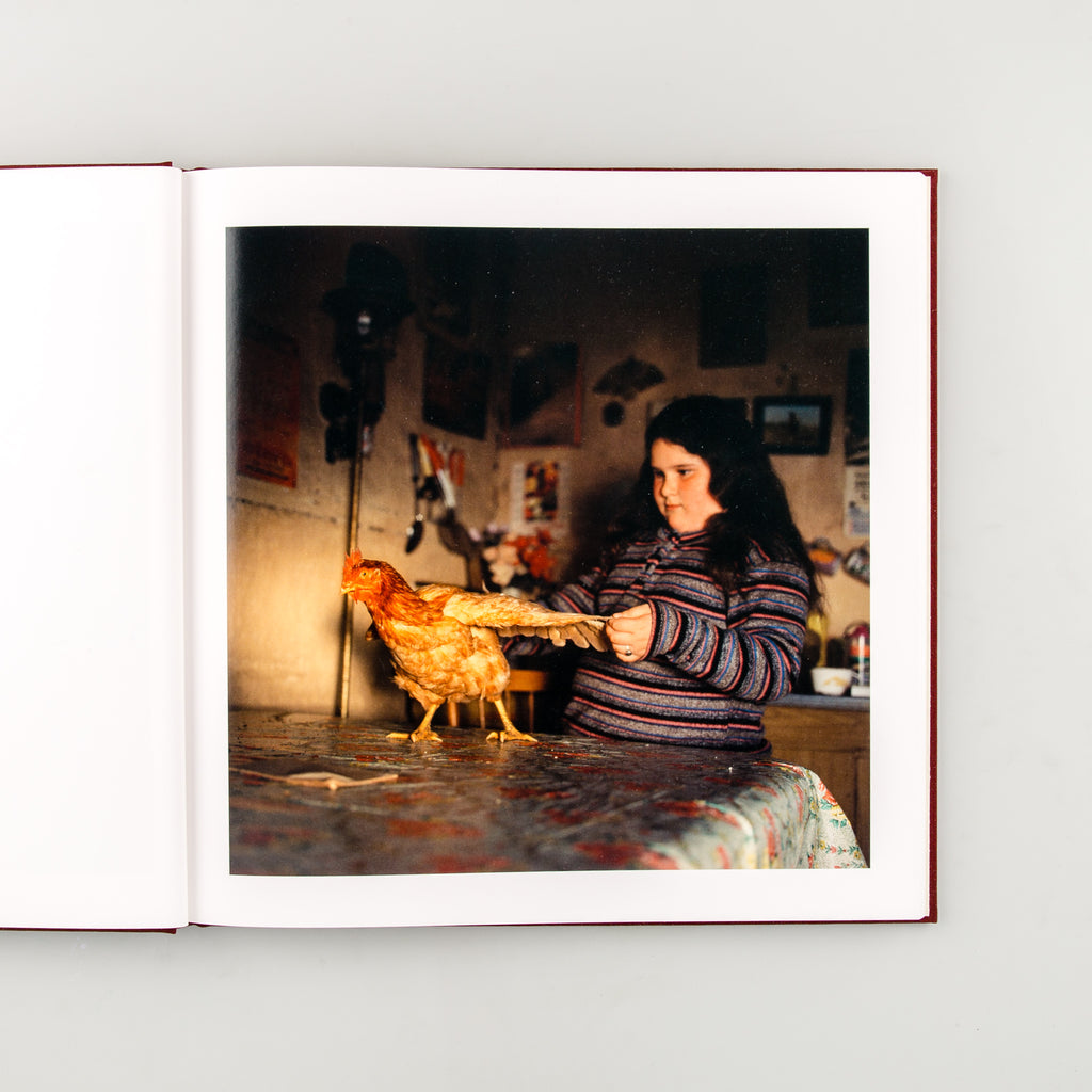 The Adventures of Guille and Belinda and The Enigmatic Meaning of Their Dreams by Alessandra Sanguinetti - 3