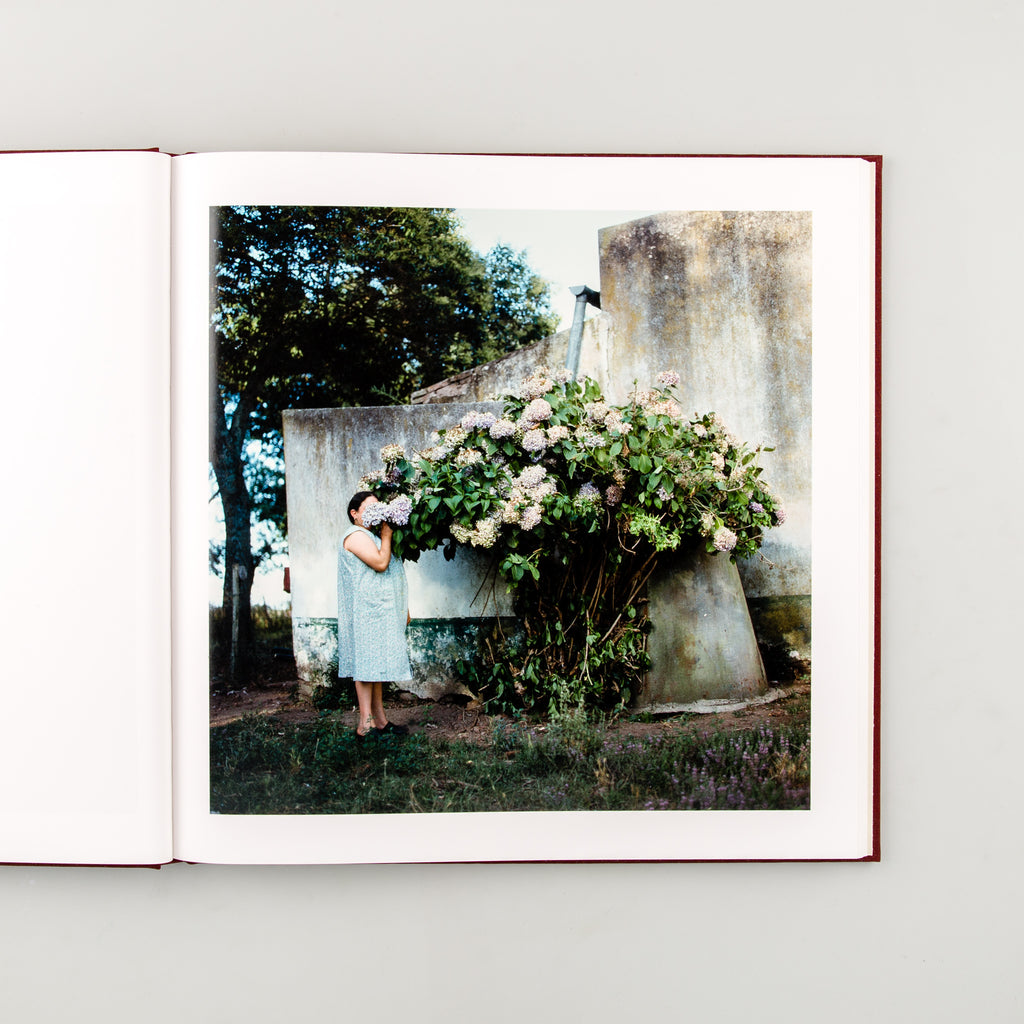 The Adventures of Guille and Belinda and The Enigmatic Meaning of Their Dreams by Alessandra Sanguinetti - 4