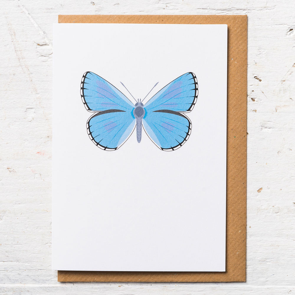 Adonis Blue Butterfly Greeting Card