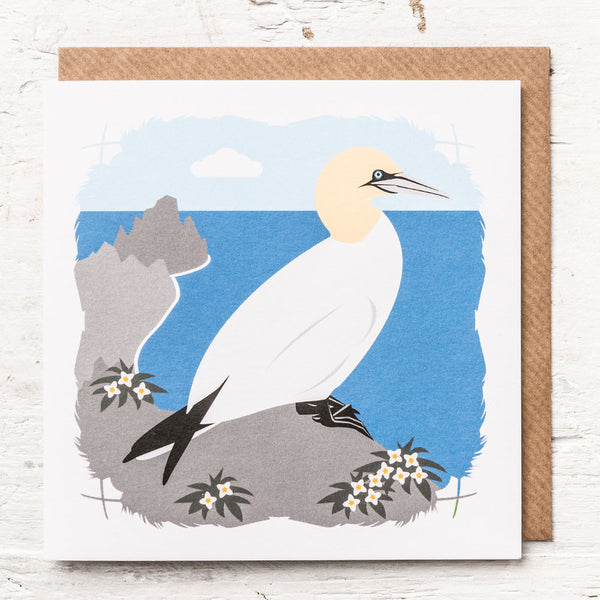 Gannet Greeting Card