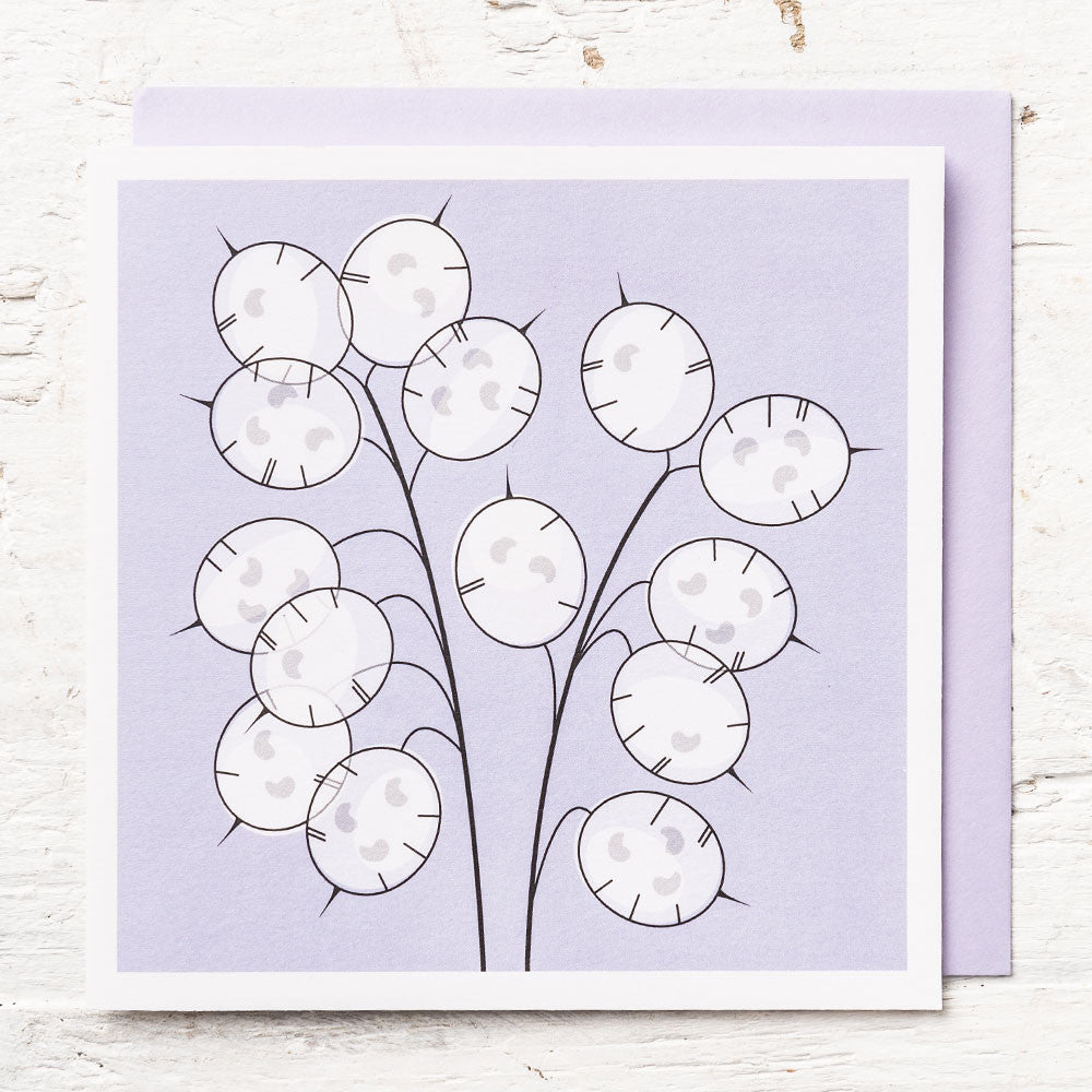 Honesty Seeds Greeting Card