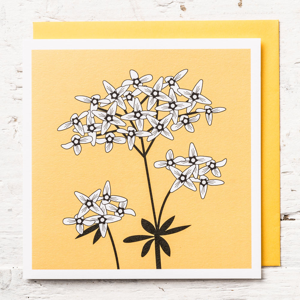 Sweet Woodruff Greeting Card