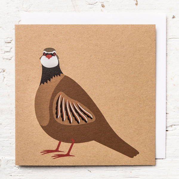 Mr Red-legged Partridge