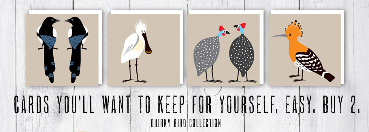 Quirky Bird Collection