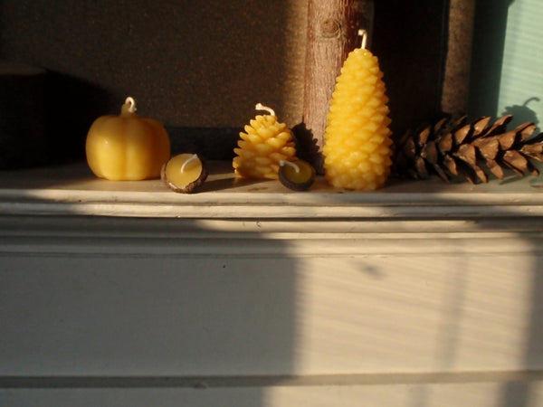 woodland beeswax candle sampler -candles- prettydreamer - 2
