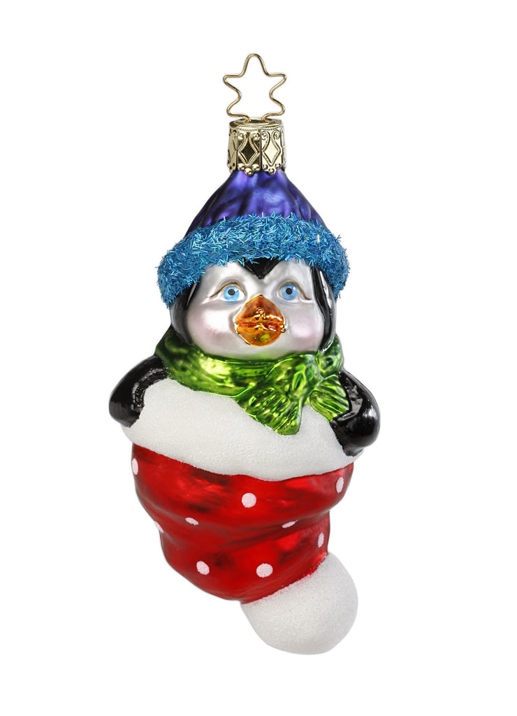 Penguin in Blue Santa Hat