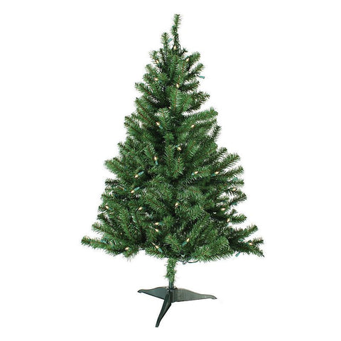 4' Austin Fir Narrow Green