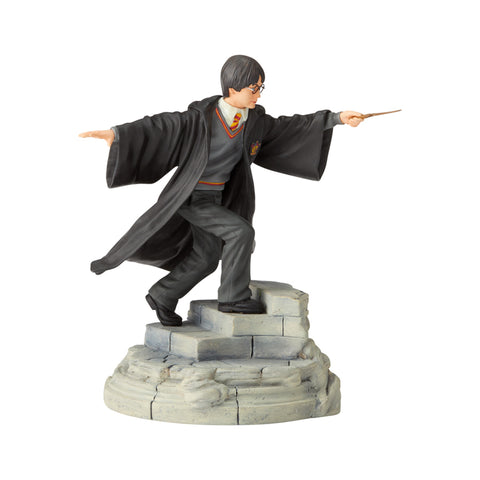 Harry Potter Year One Figurine, 6003638