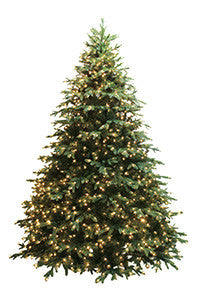 Durango Fir Tree 7.5'
