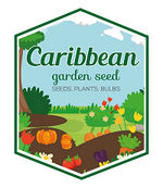 Caribbeangardenseed
