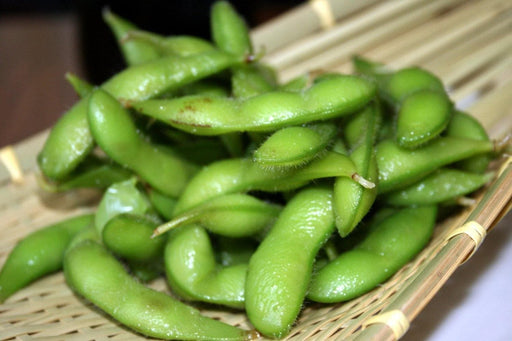 Edible soybean, called Edamame in Japan and Mao Dou in China - Caribbeangardenseed