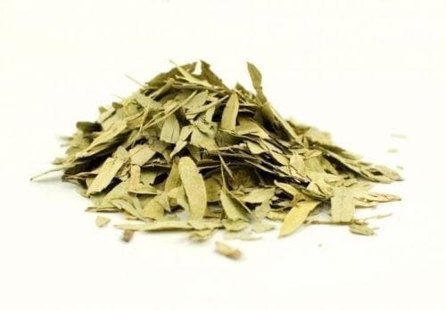 Dried Senna Leaf ,herbal tea, true senna, Organic Herb - Caribbeangardenseed