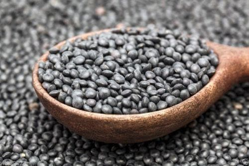 Lentil,BLACK LENTIL SEEDS(Lens culinaris) Indian Heirloom - Caribbeangardenseed