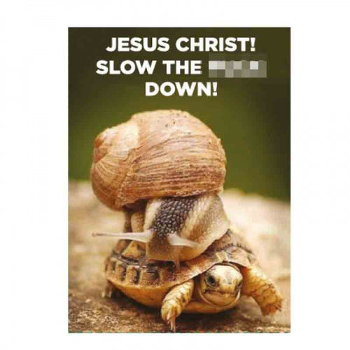 Animal Humour Metal Magnet-Slow Down