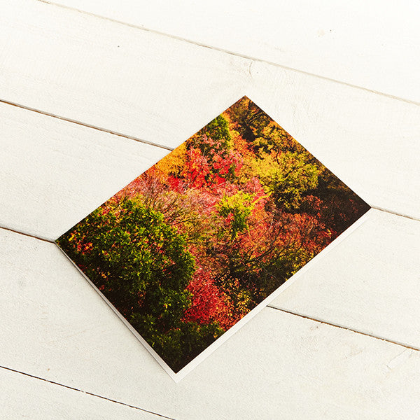 """Harvest Colors"" Greeting Cards (Set of 12)"