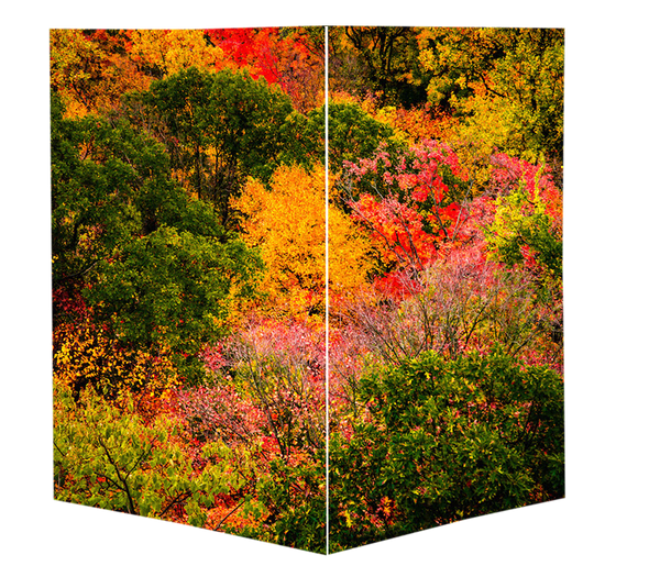"POS ""Harvest Hues"" (Greeting Card Set 12 pack)"