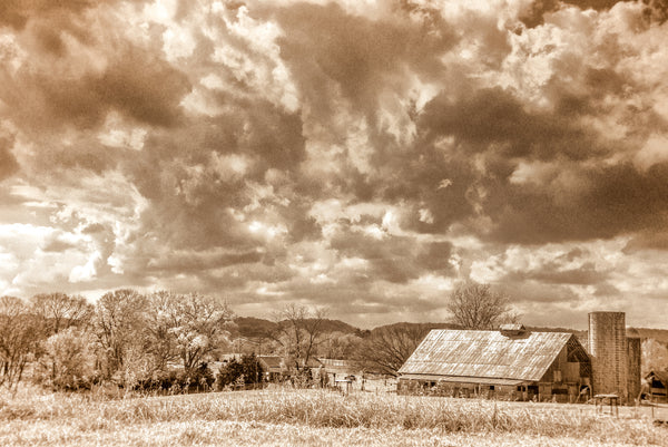 "Tennessee ""Harlinsdale Farm II"""