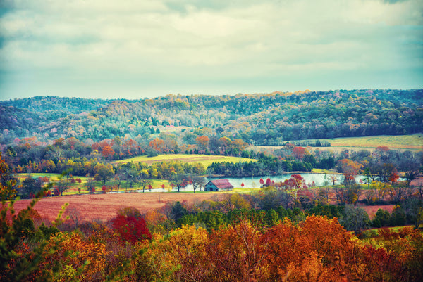 "Tennessee ""Water Valley Overlook in Natchez Trace in Color"""